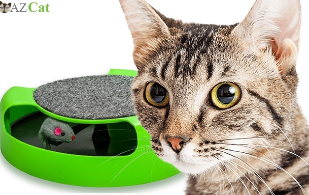 AroPaw Cat Interactive Toy With Rotating Running Mouse And A Two-In-One Scratching Pad - Catch The Mouse - Catnip Toy Mouse