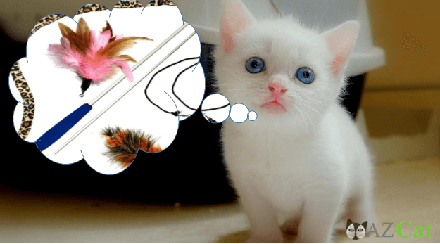 Feather Toys For Kitten