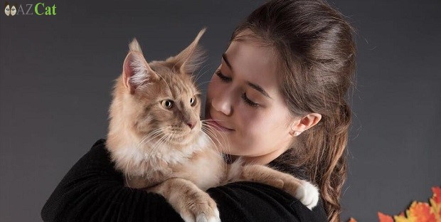 How to Effectively Administer Medicines to Your Pets